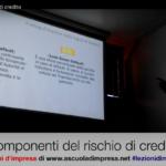 componenti del rischio di credito